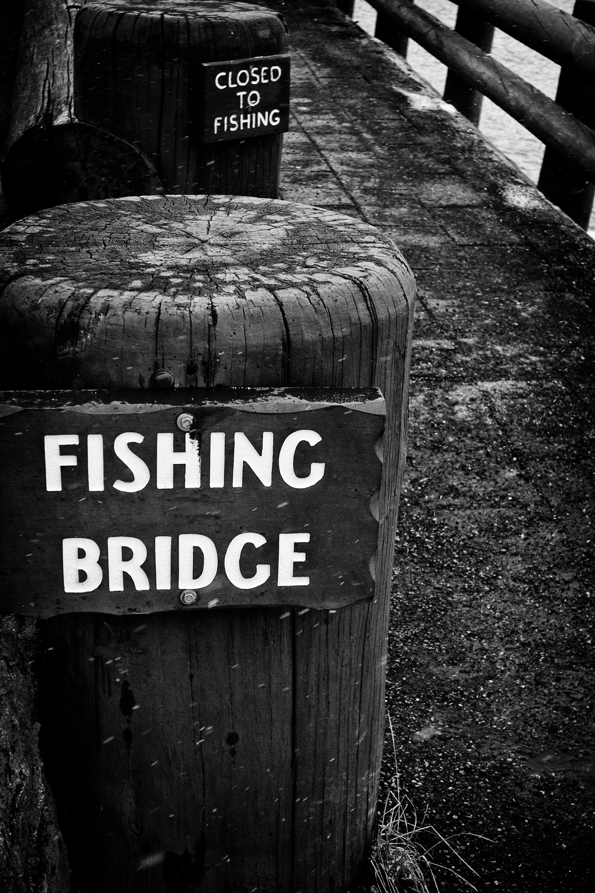 7: Fishing Bridge … Or Not